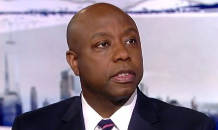 Tim Scott: Dems 'lose their minds' when Trump talks about helping minority communities