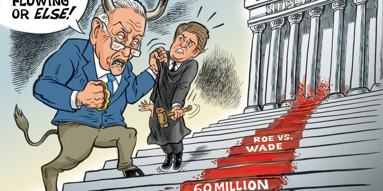 Schumer Threatens Supreme Court Judges