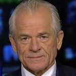 Peter Navarro releases 36-page report alleging election fraud 'more than sufficient' to swing victory to Trump
