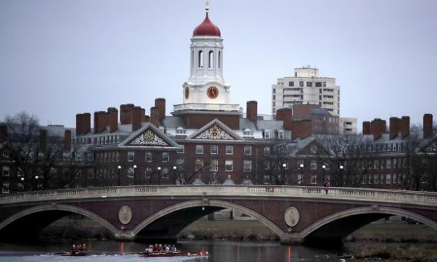 'An Inconvenient Minority' Exposes Harvard's Real Systemic Racism and the Hidden Consequences of 'Diversity, Equity, and Inclusion'