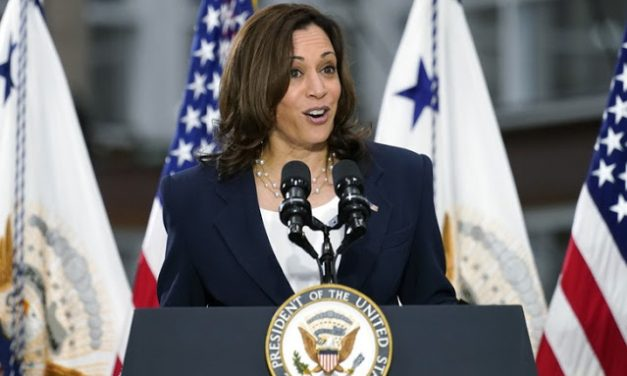 [VIDEO] Kamala Harris Comes Out of Hiding, Gives Interview, Reminds America Why She Shouldn't Give Interviews