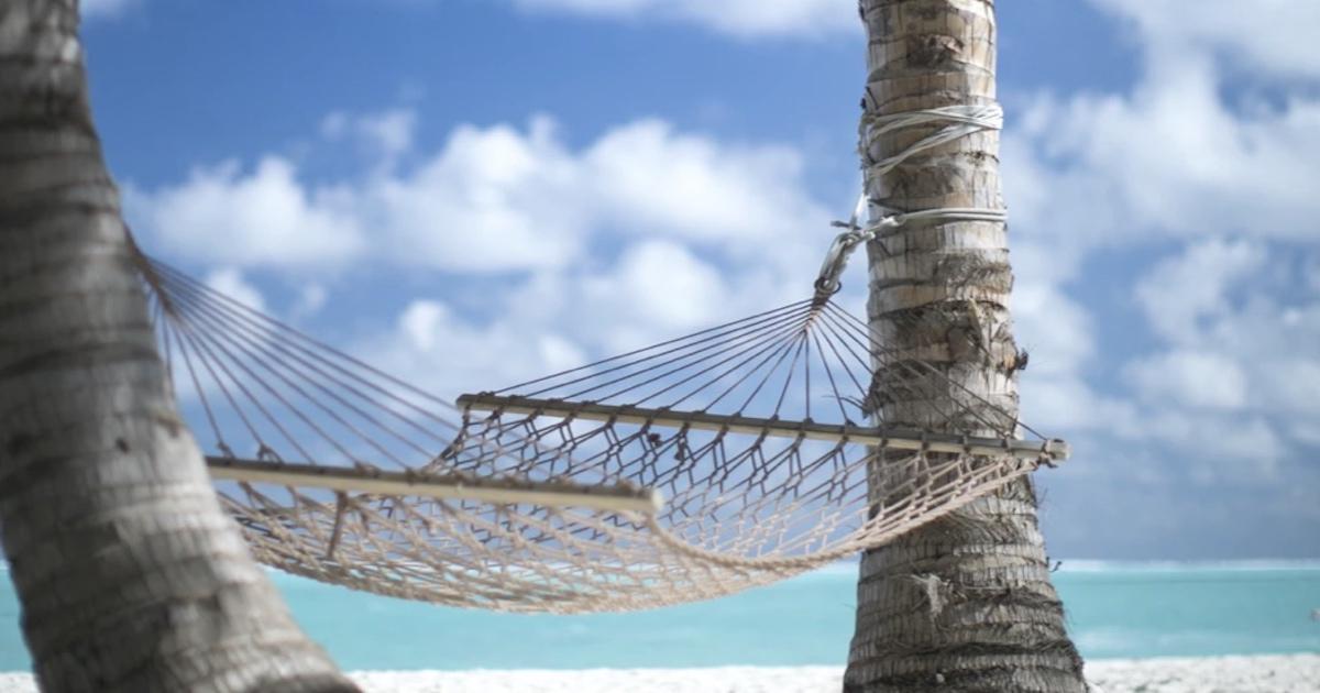 Corporate Woke Folk Don't Take Vacations